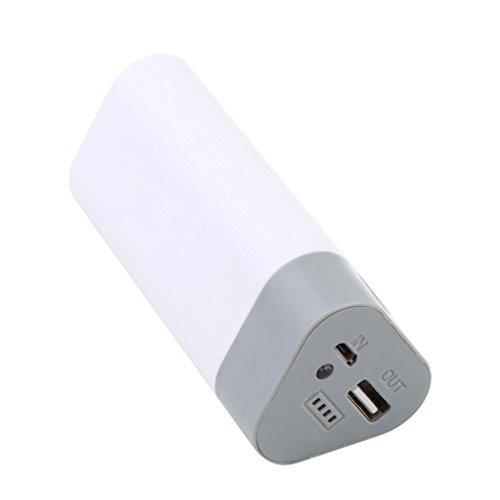 5V 1A 18650 3x USB cargador de caja de la caja móvil para el teléfono móvil