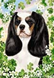 "Cavalier King Charles Spaniel Tri by Tamara Burnett St. Patricks Day Garden Dog Breed Flag 12"" x 17″"