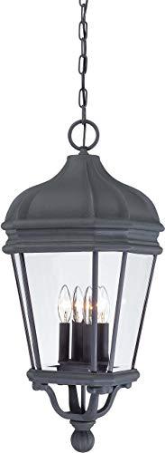 (Minka Lavery Outdoor Pendant Lighting 8694-66, Harrison Cast Aluminum Ceiling Lighting for Patio, 40 Watts, Black)