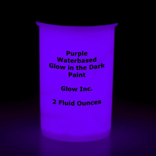 Purple Glow in the Dark Paint 2 Fluid Oz.