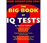 img - for The Big Book of IQ Tests book / textbook / text book