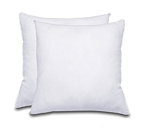 Foam Throw Pillow Insert 18x18 inch 2 PACK,White- 100% Polyester Hypoallergenic Stuffer - Standard Square Pillow Inserts for Indoor and Outdoor - Standard Square Pillow