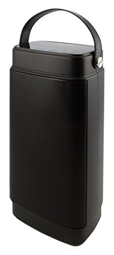 iLIVE Portable Bluetooth Speaker System (2-Pack) Black ISBW2116B