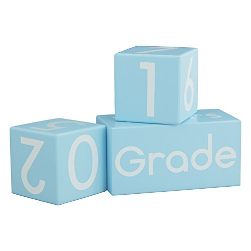 Baby Milestone Blocks - Baby Age Blocks for Baby Pictures | Baby Monthly Milestone Photo Wooden Age Blocks | Newborn Photography Props for Baby Girl Boy Gifts | Premium Solid Wood Milestone age blocks