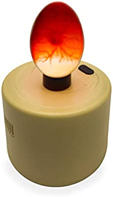 High Intensity Egg Candler for All Egg Types Ideal for broody or Incubator//Incubation Eggs