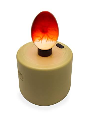 Titan Incubators High Intensity LED Chicken Egg Candler/Tester - Battery Powered