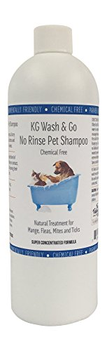 KG Wash & Go No Rinse Pet Shampoo - 16oz (Includes foamer Bottle) for Mange, Fleas, Ticks, Mites and Itchy Skin Problems. Chemical Free, Infused with a Unique Blend of enzymes Developed for Pets.