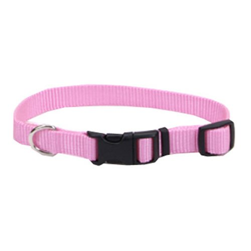 Coastal Pet 06901 A PKB26 Adjustable Collar, 1-Inch, Pink