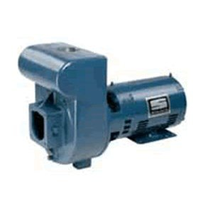 Pentair DMJ3-172 3-Phase Medium Head D-Series Self-Priming Centrifugal Commercial Pool Pump, 230/460-Volt, 5 HP by Pentair