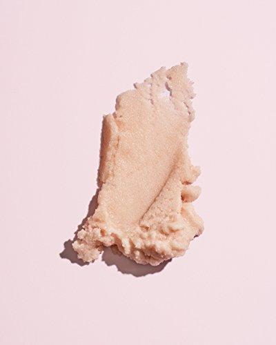 Herbivore Botanicals - All Natural Coco Rose Body Polish/Sugar Scrub (8 oz / 226 g)
