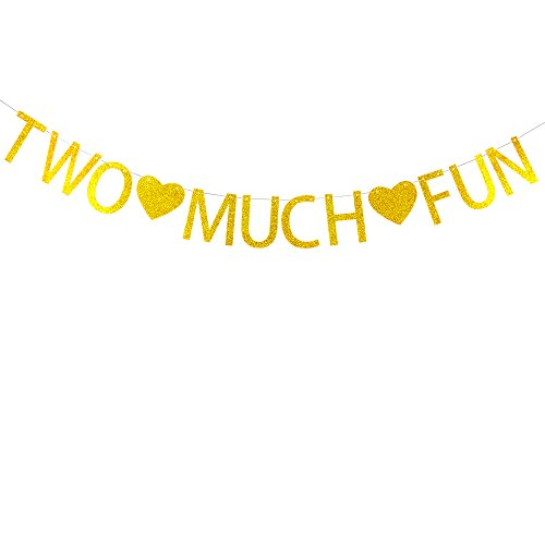 Two much fun with heart banner gold glitter banner for 2nd birthday party -