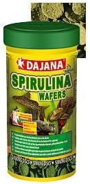 Spirulina Wafers 1kg im Beutel