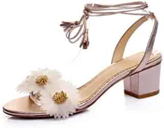 d2feb4e0d25c0 Shopping Clear - Sandals - Shoes - Women - Clothing, Shoes & Jewelry ...