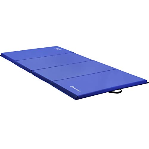 HI-MAT Gymnastics Mat, Folding Exercise Mat Thick Aerobics Mats Tumbling Mats for Stretching Fitness with Carrying Handles (Exercise Mat-Blue)