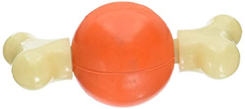 PetSafe Medium Sportsmen Bouncy Bone Pet Chew Toy -