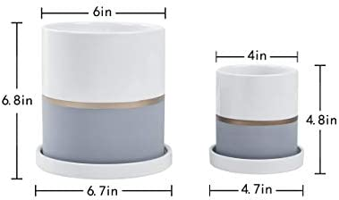 Fieren White Ceramic Flower Pot Garden Planters 6 4 Large Plant Indoor Pot Containers with White Texture and Gold Detail Ceramic Garden Pot with Tray for Indoor Planter White Planter 6 4 Gray White