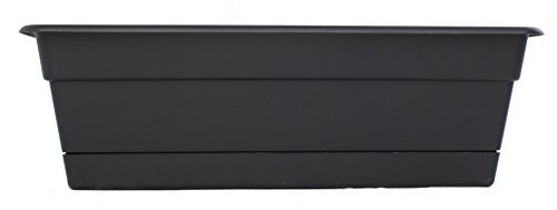 Bloem DCBT3000-12 12-Pack Dura Cotta Plant Window Box, 30-Inch, Black by Bloem