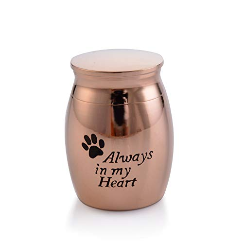 (Sunling in My Heart Paws Engraved Small Stainless Steel Decorative Memorial Keepsake Cremation Urns Jar for Human Pet Ashes Funeral Bottle Holder for Grandma,Grandpa,Rose)