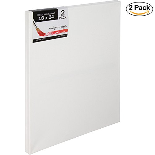 18 X 24 Inch Stretched Canvas Value Pack Of 2