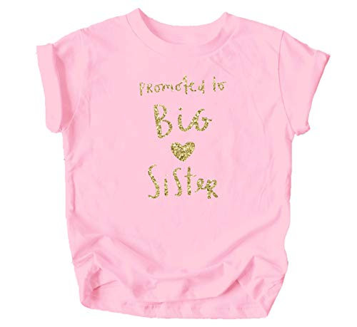 Olive Loves Apple Promoted to Big Sister Heart Colorful Sibling Reveal Announcement T-Shirt for Baby and Toddler Girls Sibling Outfits Pink Shirt