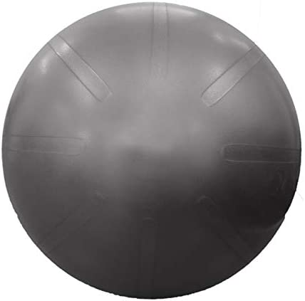 Fitterfirst Duraball Pro Exercise Ball