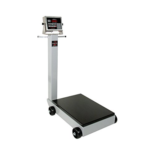 Detecto 5852F-204 Portable Digital Floor Scale, 500 lb. Capacity, 204 Indicator by Detecto