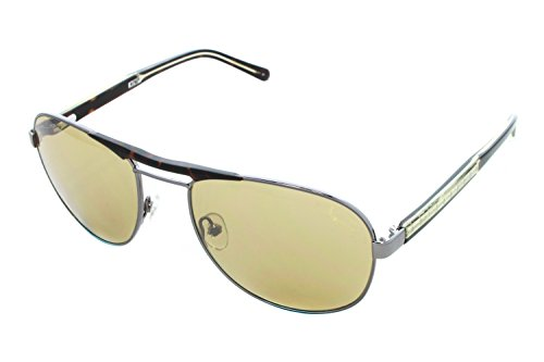 Penguin la Gunmetal gafas sol Kent Eye Original size55 de 1wZCq44