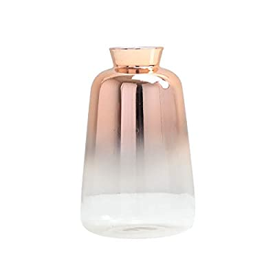 """SVY Flower Bud Ombre Vase, Desk Floral Glass Vase, Champagne Gold Color Stylish Decorative Scent Bottle Shape Flower Glass Vase (2.56"""" W 4.33"""" H) - High Qualiy with 14 Days Warranty -- 100% Satisfaction Guarantee. The flower bud vase is made of classic glass. Each vase features thick glass walls and weighted base to ensure durability. This vase is made using only high quality material. Stylish Design -- champange gold color stylishly display your favorite blooms in this bud vase, it's tube form and subtle lines create a warm and contemporary look and is perfect for any room in the home. Perfect For Plants -- The flower bud vase fits perfectly with floral stems or your favorite fresh flower (not included). - vases, kitchen-dining-room-decor, kitchen-dining-room - 31kbbKfpU9L. SS400  -"""
