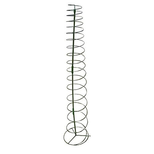 Spiral Plant Supports - 8