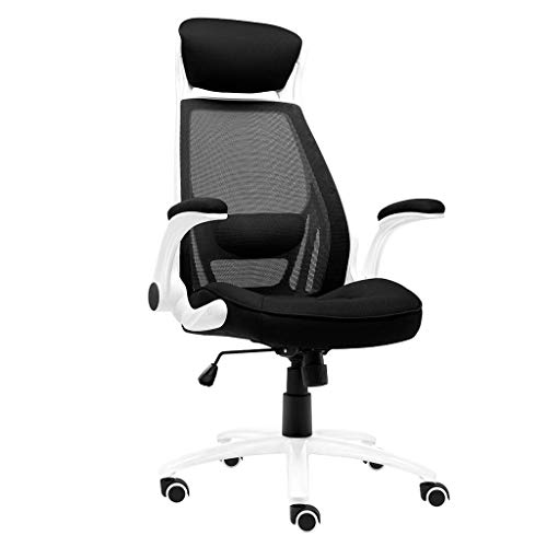 Ace lby Home Office Chair, Boss Chair, Modern Minimalist Staff Chair, Self-Control Lifting Handrail Ventilation Net, Bearing Weight 180kg
