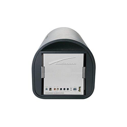 Bafle cilíndrico de bajos de 10' con Amplificador AUDIOBAHN