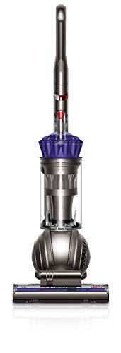 Dyson Ball Animal Upright Vacuum, Purple (Certified Refurbished) -