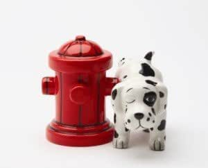 PG Trading 8168 3 in. Wheres the Fire Salt and Pepper Shakers