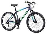 26 inch Schwinn Breaker Bike