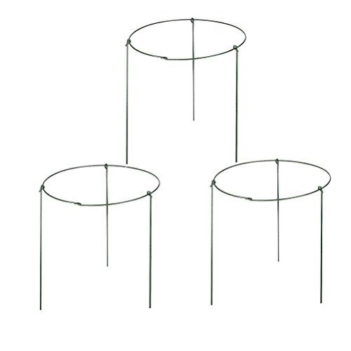 (Amgate 3 Set Garden Mini Trellis Plant Support Pot , Dia)