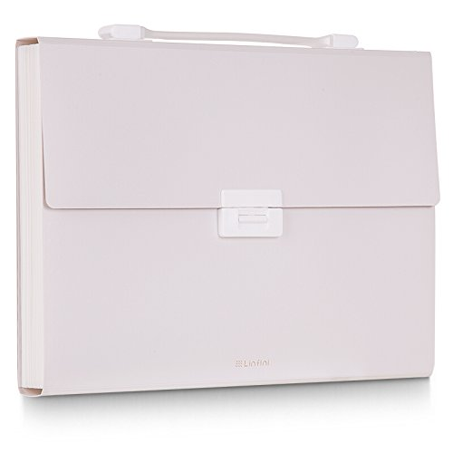 FREUDE Expanding File Folder with Handle,A4 Size Accordion File Organizer,13 Pockets Monthly Document Organizer, Plastic File Organizer with Colored Labels for Office/Back to School