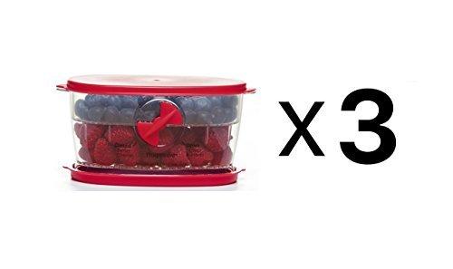 Prepworks from Progressive International LKS-08 Berry Keeper - 3 Pack
