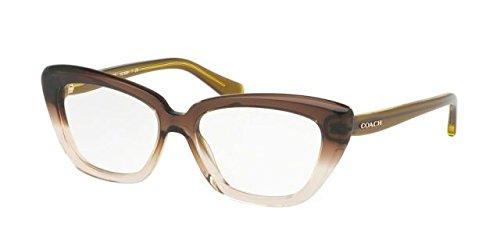 Coach Women's HC6090 Eyeglasses Olive Brown Gradient/Olive - Website Cateye