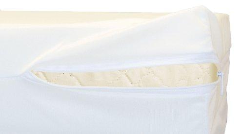Sleep Defender Mattress Encasement, 12-Inch, Queen