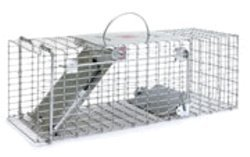 LITTLE GIANT Single Door Entry Live Animal Trap, ()