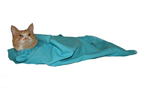Cat-in-the-bag Large Light Blue Cozy Comfort Carrier- Cat Carrier and Grooming Bag for Vet Visits, Medication Administration, Dental Care, and Car Travel ()
