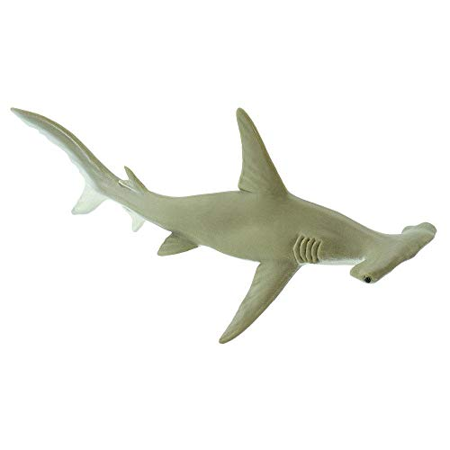 Replica Shark Hammerhead - Safari Ltd Wild Safari Sea Life Hammerhead Shark