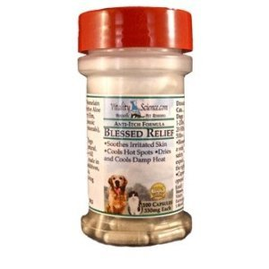 Blessed Relief for Dogs – Treats Hot Spots, Skin Eruptions, Sinus Conditions, My Pet Supplies