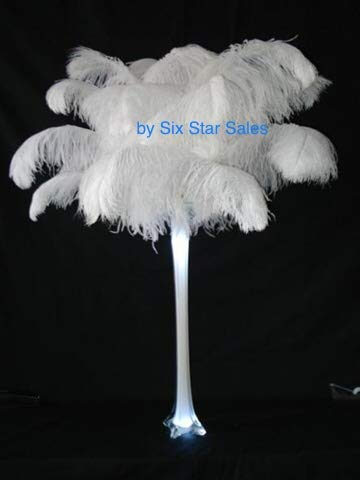 Ostrich Deluxe (SPECIAL LOT Wholesale Bulk Ostrich- Bleach White White 10 Deluxe Ostrich Plumes-18-20 inches Long-Wedding Eiffel Tower Feathers)