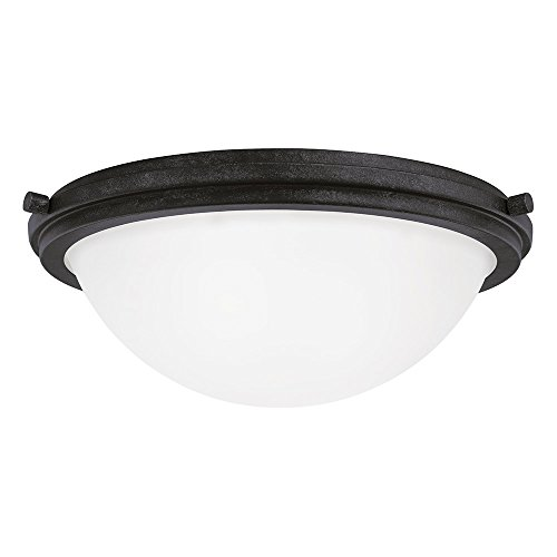 Sea Gull Lighting 75661-839 Winnetka Two-Light Flush Mount Ceiling Light with Satin Etched Glass Shade, Blacksmith (14' Transitional Flush Mount)
