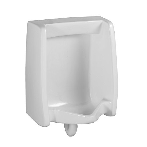 Washbrook Urinal (American Standard 6590.001.020 Washbrook FloWise Universal Urinal, White)