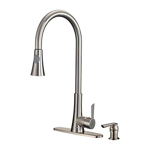 Dyconn Faucet TB001 A18BN Pull Out Dispenser