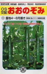 【キュウリ種子】 おおのぞみ (埼玉原種育成会)350粒 B00ANEHEOS