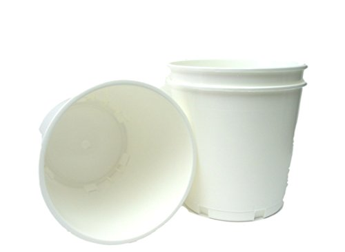 Church Offering, Donation Buckets, 12 Pack, White
