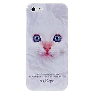 HC-Serie animal animales gato caja de plástico patrón para el iphone 5/5s